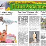 WochenSpiegel, Ausgabe 10/2015